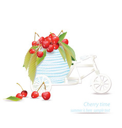 mixed cherry in a decoration bycicle vector image