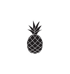 Pineapple and ananas soldi icon healthy fruit vector