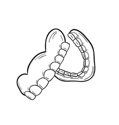 sketch of the denture vector image