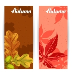 Banners with autumn leaves and plants Design for vector image vector image