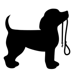 Beagle Leash vector image