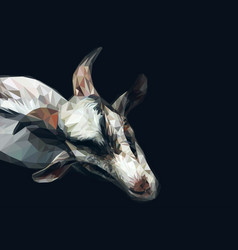 polygonal goat vector image
