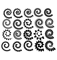set rolled flowers collection rolled paper flower vector image