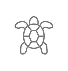 Turtle aquatic animal line icon vector
