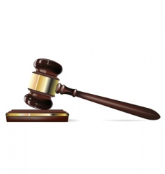 justice gavel vector image vector image