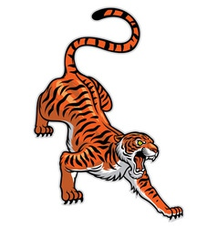 tiger in classic tattoo pose vector image