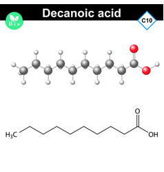 decanoic acid atomic structure vector image vector image