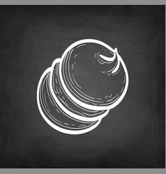 chalk sketch meringue vector image