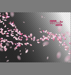 petals flying background vector image