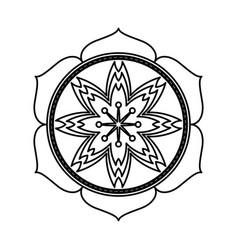 sakura flowers traditional symbol of spring in vector image