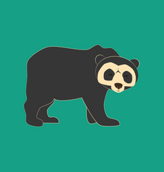 spectacled bear animal vector image