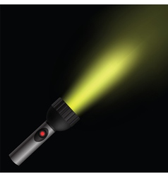 Torch light vector