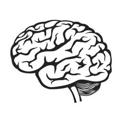 black Brain icon vector image