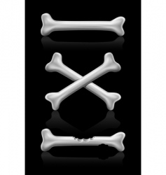 bones crossed icon vector image vector image