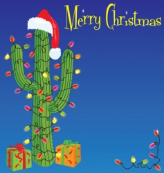 Christmas cactus background vector image vector image