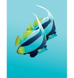 Banner fish vector