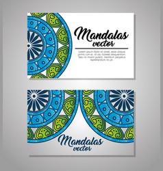 mandala vintage template vector image