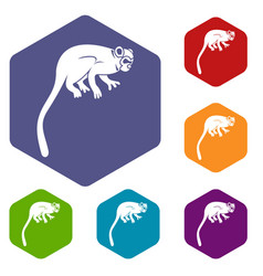 Marmoset monkey icons set hexagon vector