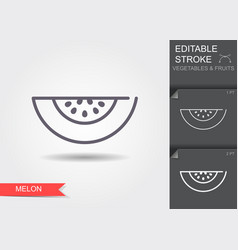 melon line icon with shadow vector image