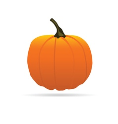 Pumpkin on a color for Halloween vector
