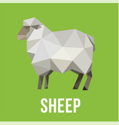 Sheep animal farm with polygonal geometric style vector