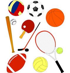 sport equipmen vector image