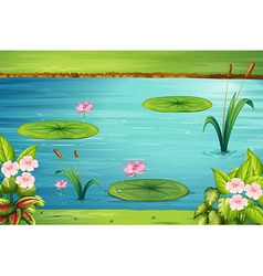 Scene with lotus in the pond vector