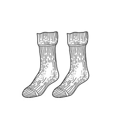 black textile socks hand drawn ink drawing vector image