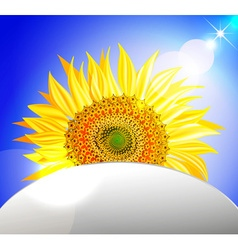 Peeking Sunflower Ornamental Design vector image