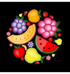 energy fruit vector image vector image