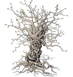 interlaced tree vector image vector image