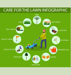 Care for lawn infographic vector