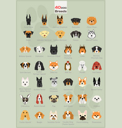 dog head background set vector image