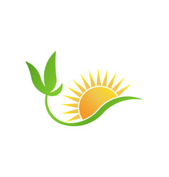 green bio-solar energy plant and sun logo vector image