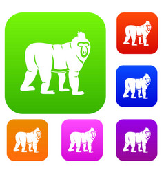Mandrill monkey set color collection vector