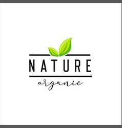 natural product logo design template vector image