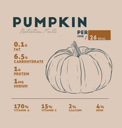 nutrition facts of pumpkin hand draw sketch vector image