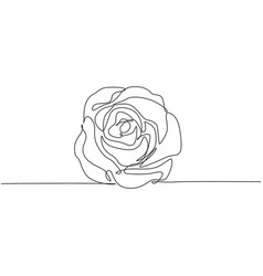 one continuous line drawing fresh beautiful vector image