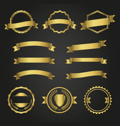 variety golden decorative elements vector image