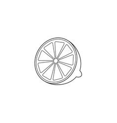 lemon line icon healthy fruit graphics vector image