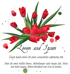 Pattern with blooming red tulips on a white vector image