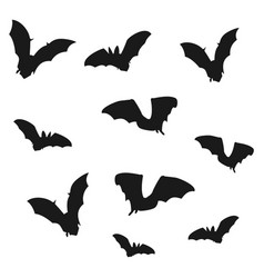 Flock of bats black shadows of bats on a white vector