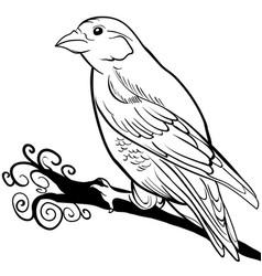 hand drawn sparrow bird animal sketch vector image