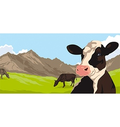 Cows with grass and mountains vector image vector image