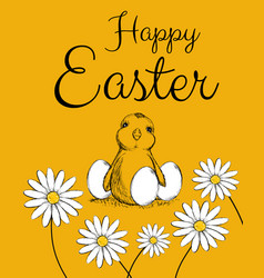 easter easter chicken vector image