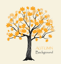 Autumn maple tree vector