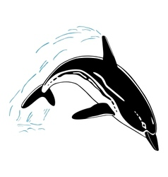 Jumping dolphin isolated on white background vector