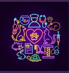 pet vet neon concept vector image