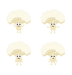 Set with funny cauliflower vector