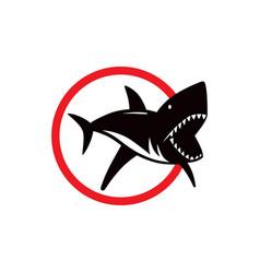 shark dangerous emblem vector image